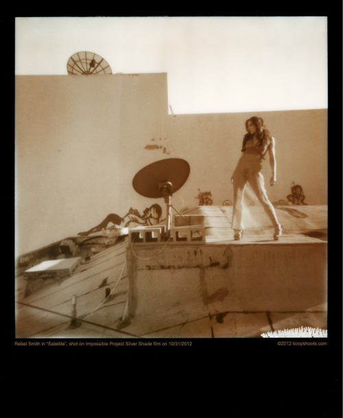 koopshoots:  Satellite  Model - Rebel Smith Photo - Koop Impossible Project Silver Shade instant film