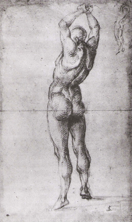 Luca Signorelli (c. 1441-1523), Nude Man From Rear. Black chalk, 41 x 25 cm (16 1/8 x 9 7/8 in). Louvre, Paris.