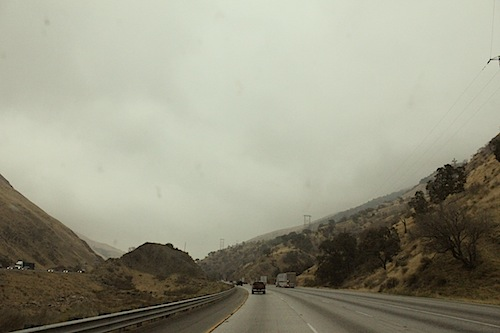 Notes from the field — our road trip from Portland to Palm Springs with The Miracles Club, Beyondadoubt and Isaiah Tillman for Hands On : Shade, a celebration of queer ballroom culture at Ace Hotel & Swim Club during Palm Springs Pride. Kiki Xtravaganza hosted a mini-mini-ball by the pool to warm everyone up for the real thing later that night in the Amigo Room with MikeQ. More on that later.