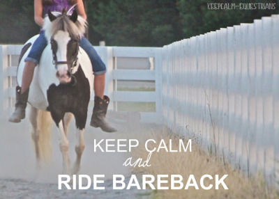 keepcalm-equestrians:  Thank you for the submission! trotting-on