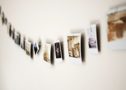 pe-trina:  Polaroid Clothesline (by SOMETHiNG MONUMENTAL)