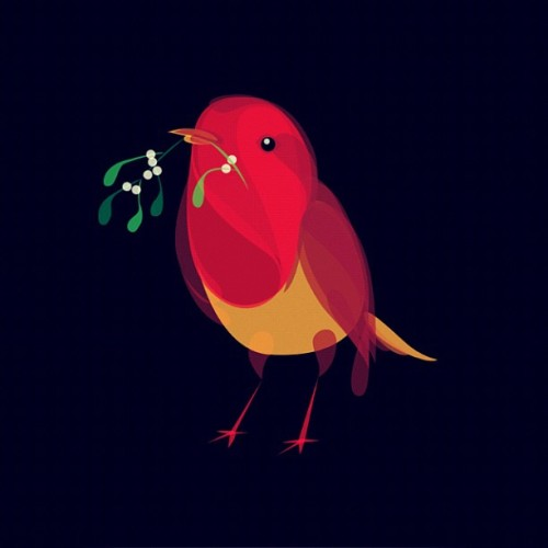 Mistletoe Robin - Christmas cards now available from http://FluidAnimals.com
