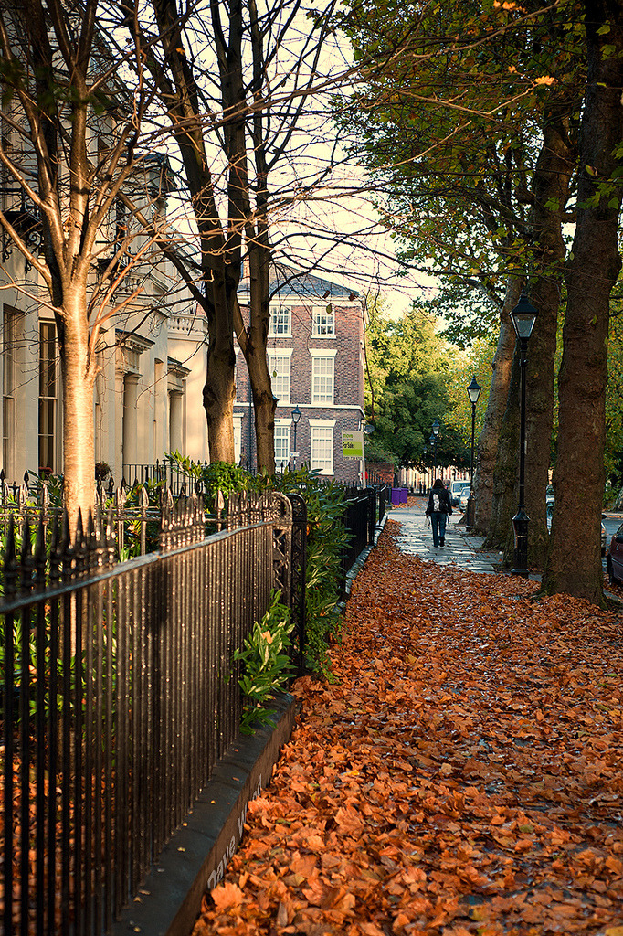allthingseurope:  Autumn in Liverpool, UK (by Dave Wood Liverpool Images)