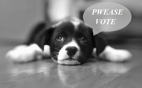 If you don't vote, puppies will be sad. You don't want sad puppies do you?