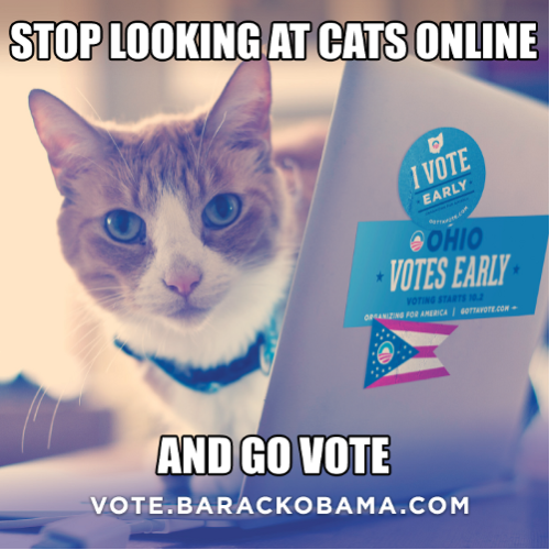Fido's going to keep staring at you in silent judgment until you go vote.