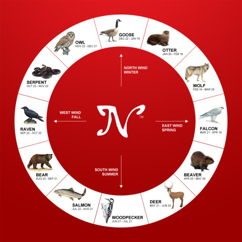 "nativeamericannews:  The Native American zodiac signs are wholly unique, and you'll not find these totemic birth animals anywhere else but here. Find your animal sign and follow the link to find out what it means.Goose http://bit.ly/PlNjMJOtter http://bit.ly/XQOPbUWolf http://bit.ly/PiLeRPFalcon http://bit.ly/Rms6ieBeaver http://bit.ly/T1dCpwDeer http://bit.ly/RnsnkOWoodpecker http://bit.ly/PkI8NaSalmon http://bit.ly/RpIu1mBear http://bit.ly/XYaLltRaven http://bit.ly/RqhP4tSerpent http://bit.ly/PlvLjTOwl http://bit.ly/RqWDv8   … um, I know this is coming from the nativeamericannews Tumblr, but… really? Like. This seems… really dodgy to me. ""Native American"" zodiac signs? Which band(s) had this? Why does it map so neatly onto the 12-month calendar that is far from universal? I am just kind of confused."