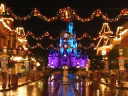 chrisharrisonhands:  I will always be in the mood to go to Disney World.