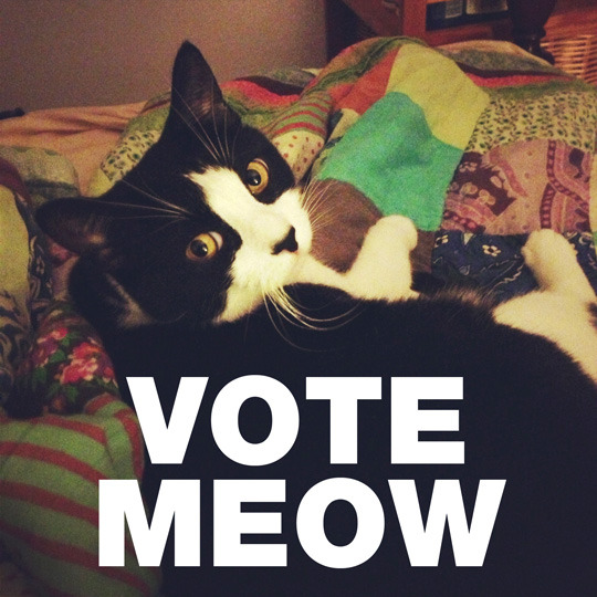 Because Mimi says so. #GoVote.