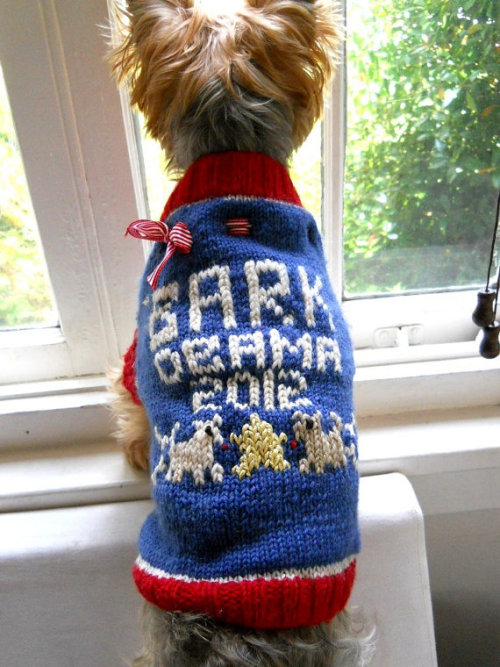 Bark the Vote today! Ed. note: I couldn't find a Romney sweater vest, so if pet sweaters are an indicator of voting patterns, it's going to be an Obama landslide.