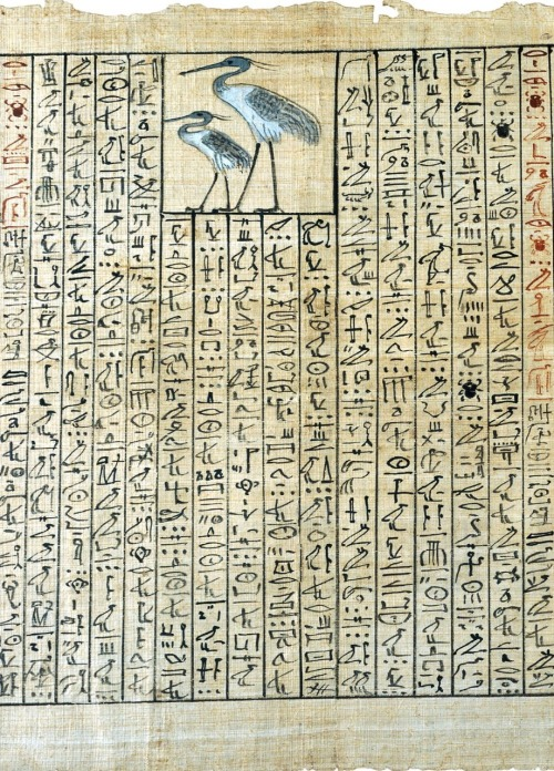 sekhemkare:  ancientart:    Papyrus from the Book of the Dead of Nakht (detail). From Thebes, Egypt, Late 18th Dynasty, 1350-1300 BC. Courtesy, & currently located the British Museum, London    Spell 83, for transforming into abennu-bird. I have flown up as an ancient one, I have become as Khepri, I have prospered as a plant, I have covered myself as a tortoise, I am the essense of every god…