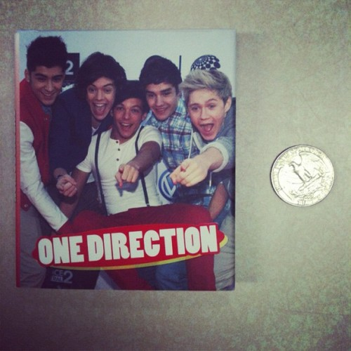 Where should I shelve the world's smallest book about One Direction? #teenlibrarianproblems