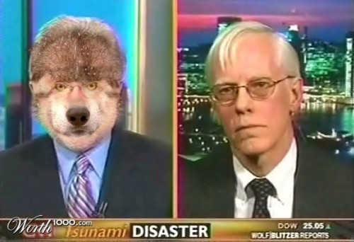 "I was bored waiting for votes to come in so I googled ""actual Wolf Blitzer"" and this is what came up."
