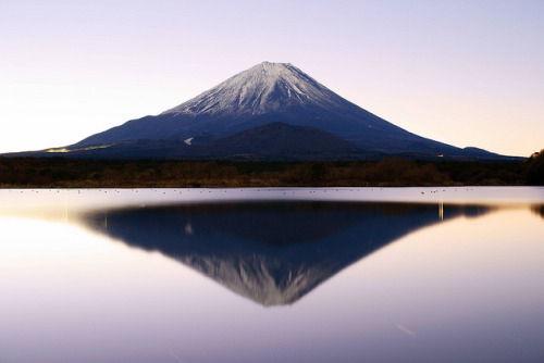 juicelia:  the day of Mt.Fuji (2/23) by peaceful-jp-scenery on Flickr.  Wow! I'm in love with this.