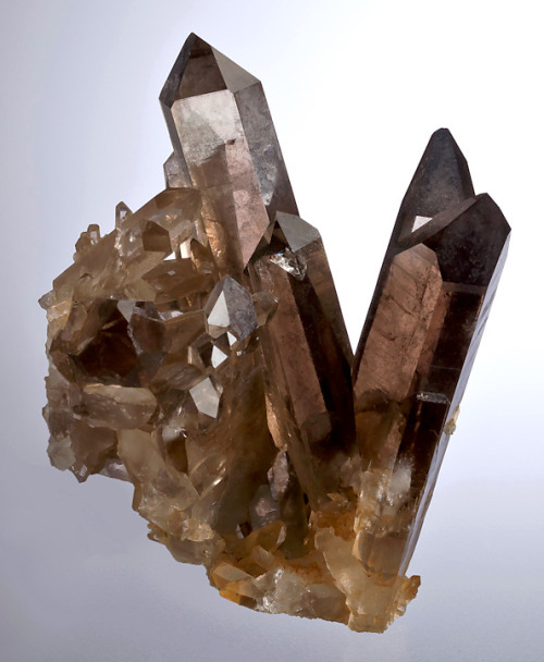 Smoky Quartz from Norway by Exceptional Minerals