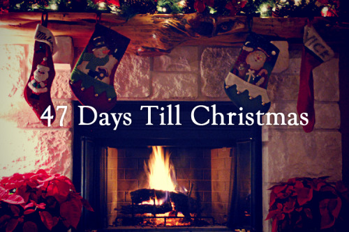 Christmas countdown days until christmas christmas countdown countdown till christmas