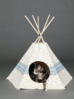 Love to have ❤ Cat Tipi