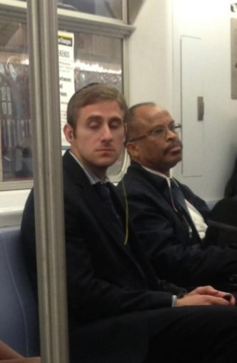 "Looks Like Steve Carell and Ryan Gosling Had a Secret Love Child  ""The Notebook"" was actually based on their relationship http://ow.ly/f6bP0"