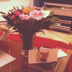 Welcome home with flowers, cards and a lot of love! Thank you all <3