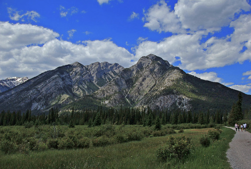 f0rbidden-forest:  Towards The Rockies by LostMyHeadache: Absolutely Free * on Flickr.
