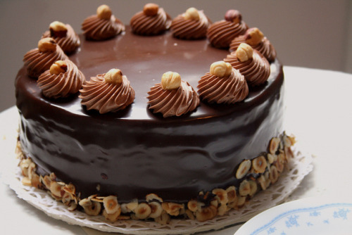 Hazelnut Cake by Munch n' Crunch