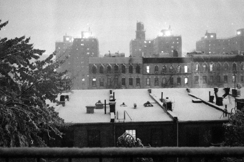 First snow day of the season in NYC. View from my apartment window on the 6th floor.