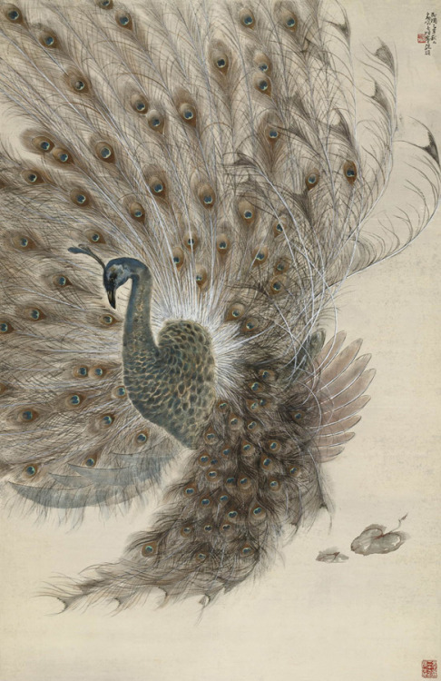 slowartday: Gao Qifeng, Peacock Spreading Tail
