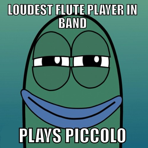 #piccolo #flute #loud #sorry #notsorry  #yourwelcome
