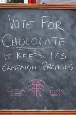 i *always* vote chocolate
