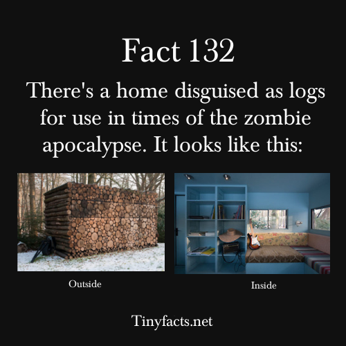 complexalien:  psych-facts:  tinyfacts:  There's a home disguised as logs for use in times of the zombie apocalypse.   Follow tinyfacts here and like facebook here  and now we all know;)