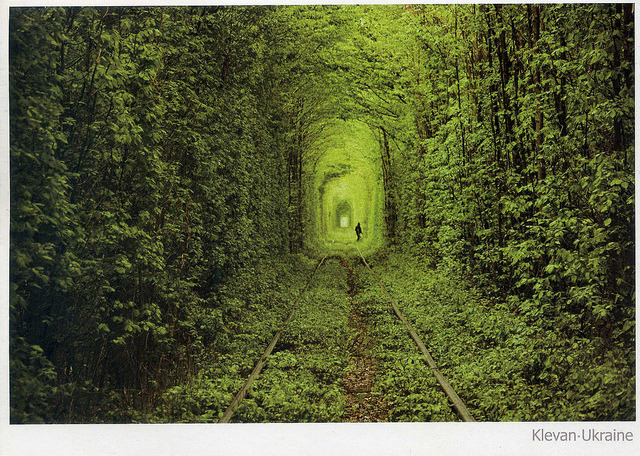 "Tunnel of Love, Ukraine by ichabodhides on Flickr.""This gorgeous long, leafy tunnel looks like a green dream or a scene from a film - but it can actually be found deep in the forests of Ukraine. Located near the town of Kleven, this luscious green tunnel provides passage for a private train that provides wood to a local factory. Measuring 1.8 miles long, the unusual rail route in Eastern Europe is also a popular spot for lovers' promises."" someone pls take me here"