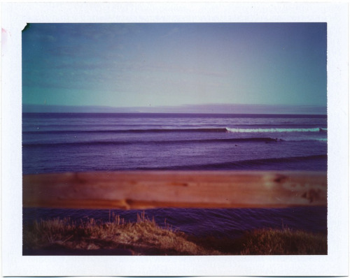California Swell, 2012
