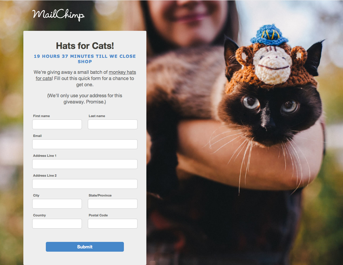 Emotional design/giveaway: Mailchimp is giving away hats for cats (the giveaway is just about over right now). Here's the video that the page linked to.