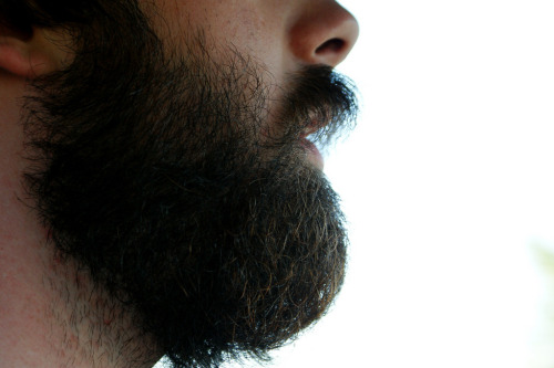 Just the way…beards should be…