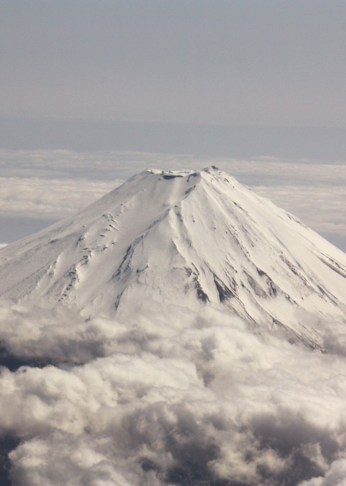 feli-cite:  Mount Fuji
