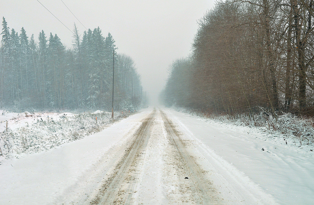 buoninverno:  buoninverno:  Cold Road to Nowhere (by ThePieCo.)  I really do love this photo.