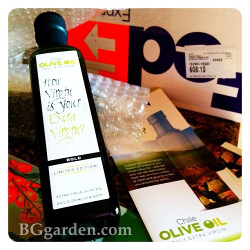 Excited to start cookin it up with @chileoliveoil and my home grown veggies! #gardenchat  (at BGgarden)