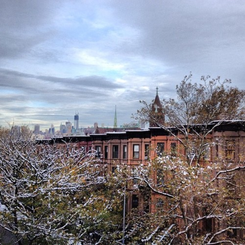 First snow in my Brooklyn home. Swoon. (at Park Slope)