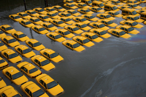 Image of the Day: Sandy relief week continues as we look at Hoboken, NJ, where flood waters submerged a parking lot full of yellow cabs (photo by Charles Sykes/Associated Press). Consider donating to Occupy Sandy.