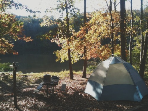 camping at lake lurleen in alabama