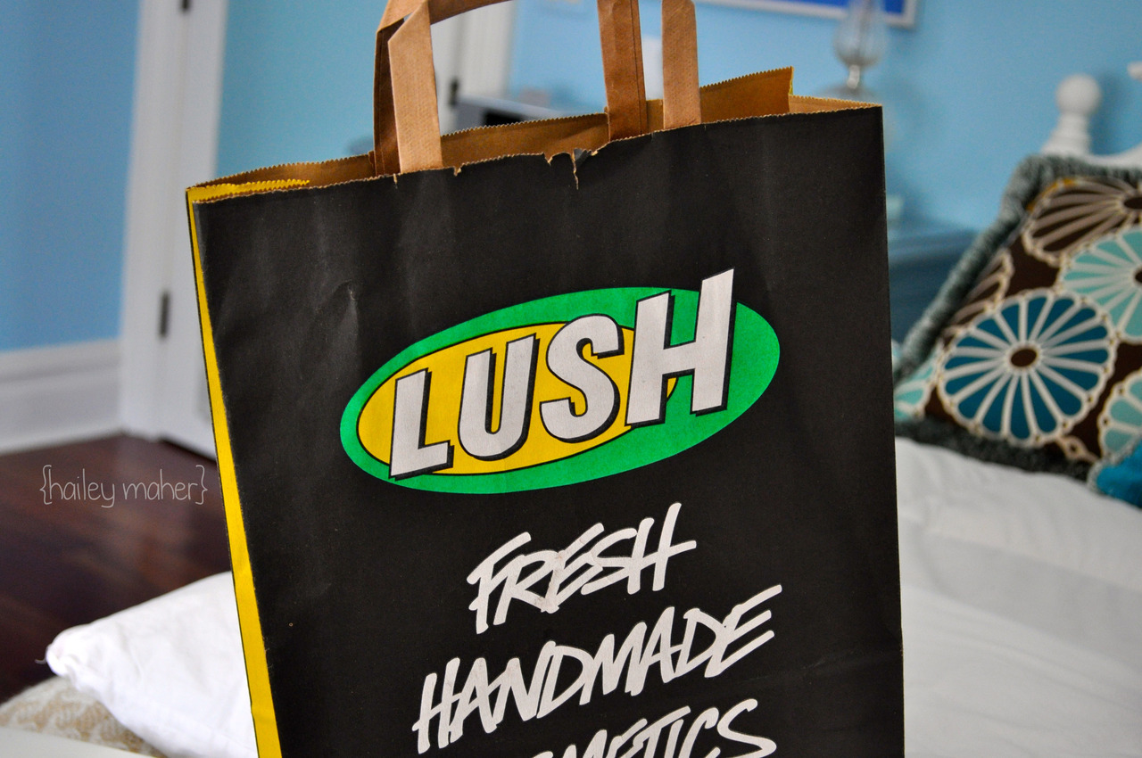 haileyandhercamera:  About the 10 billionth Lush bag I've posted