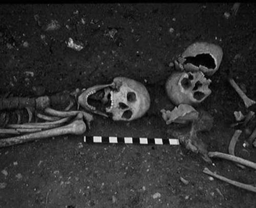 "discoverynews:  this skeleton was found buried with metal spikes through shoulders, heart area and ankles.  yikes. Vampire Skeleton Rediscovered in Britain  Details of one of the few ""vampire"" burials in Britain have emerged as a new archaeological report details the long forgotten discovery of a skeleton found buried with metal spikes through shoulders, heart area and ankles. Dating from 550-700 A.D., the skeleton was unearthed in 1959 in the minster town of Southwell, Nottinghamshire, during excavations in preparation for a new school. The dig also turned up Roman remains.Archaeologist Charles Daniels immediately recognized the skeletal remains as being out of the ordinary, but no further investigation was carried out at that time.""Daniels did jokingly comment he had 'checked the eye teeth,' clearly associating the skeleton with the vampire being,"" Matthew Beresford, of Southwell Archaeology told Discovery News.  take a bite…"
