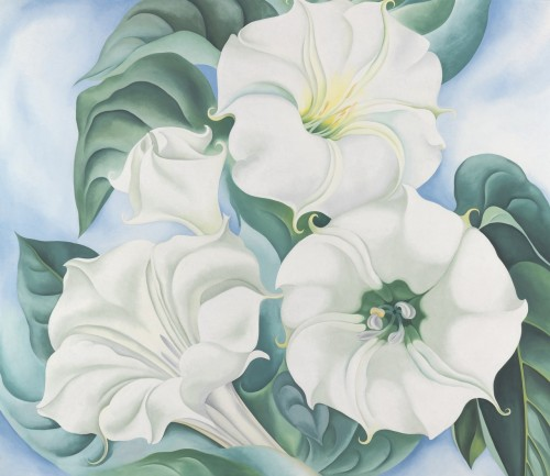 GEORGIA O'KEEFFE. Jimson Weed, 1936, oil on linen.
