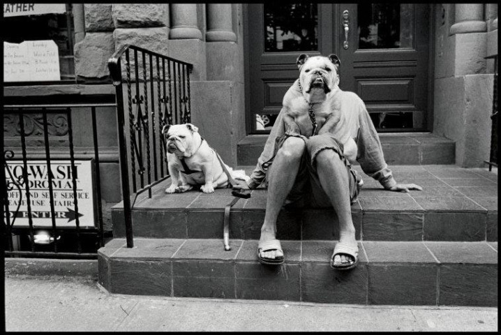 Artwork of the day: New York City. 2000 by Elliott Erwitt