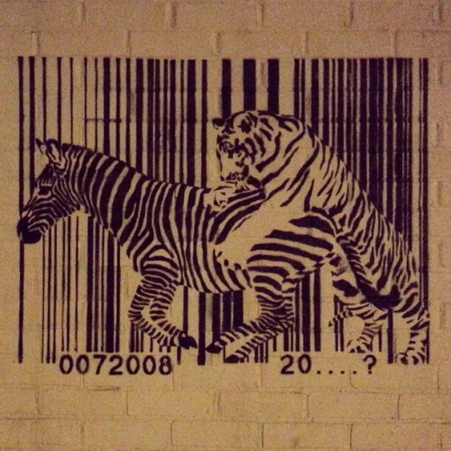 Tiger On A Zebra Barcode… #Art #Love #Nature #Animals #Politics #System #Danger #Tiger #Zebra #InstaHub #InstaDaily #PicOfTheDay #Photography #Jail #Prison #Food #Hunt #Barcode
