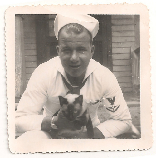 For Veterans Day. A day late!  sailor and cat by marilyn_cvitanic on Flickr.
