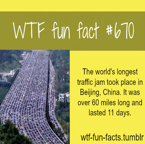 Longest traffic jam in the world MORE OF WTF-FUN-FACTS are coming HERE  funny and weird facts ONLY
