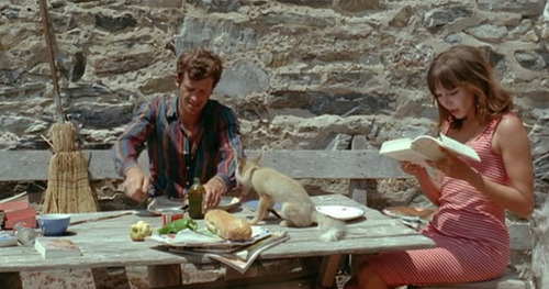 fashion-and-film:  Pierrot Le Fou (1965)