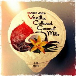 roybotvision:  This s@&t right here…is the business #TraderJoes #vanilla cultured #coconutmilk