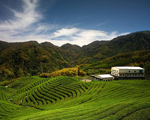 Top 8 agritourism destinations in the world