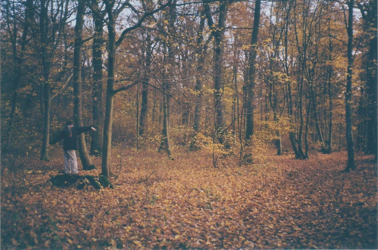 Vanish into Space (35mm / Autumn 2011)